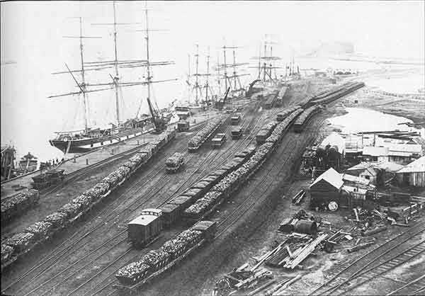 In 1884 the Newcastle Foreshore was devoted to Coal Loading.