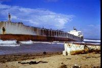 Sgyna on Stockton Beach 1974