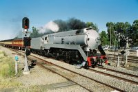 3801 Steam Train by Steve.